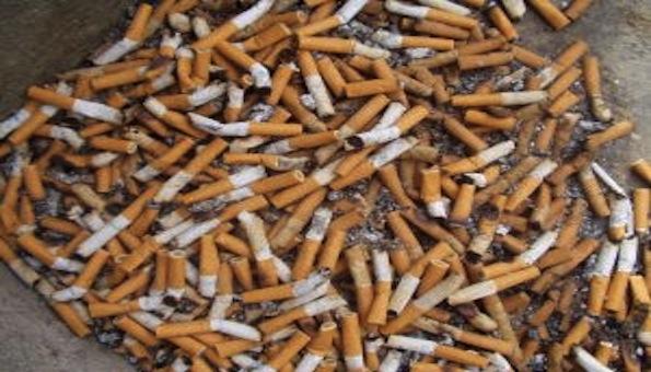 O fumo está associado a 30% das mortes por câncer