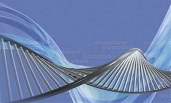 O câncer e sua relação com a imortalidade celular
